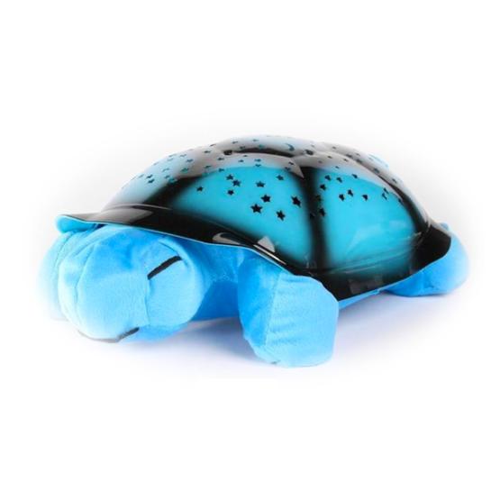 Tartaruga Kids